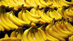 Vietnamese bananas are expensive in the world market