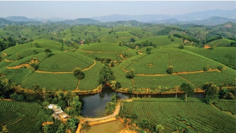 Vietnam to have over 3,000 cooperatives applying high technology by 2025