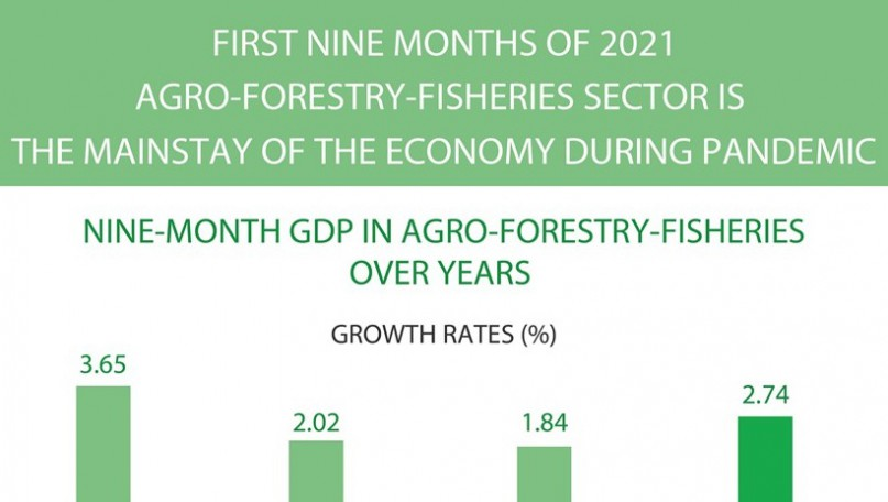 Agro-forestry-fisheries - the mainstay of the economy